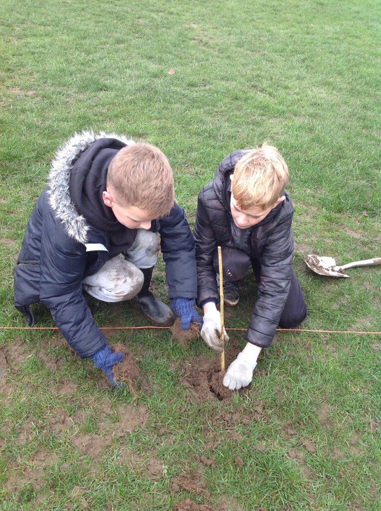 Tree Planting 6