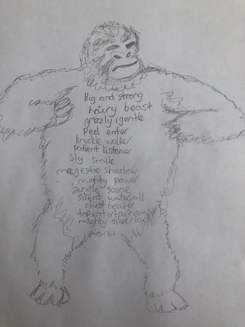 Gorilla by Rio 4WA