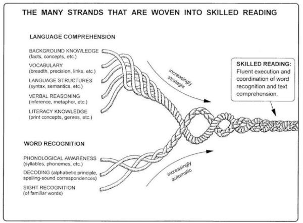 Strands_to_reading.JPG