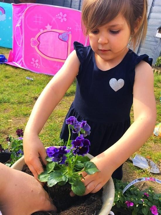 Lillie-Mai (Planting)