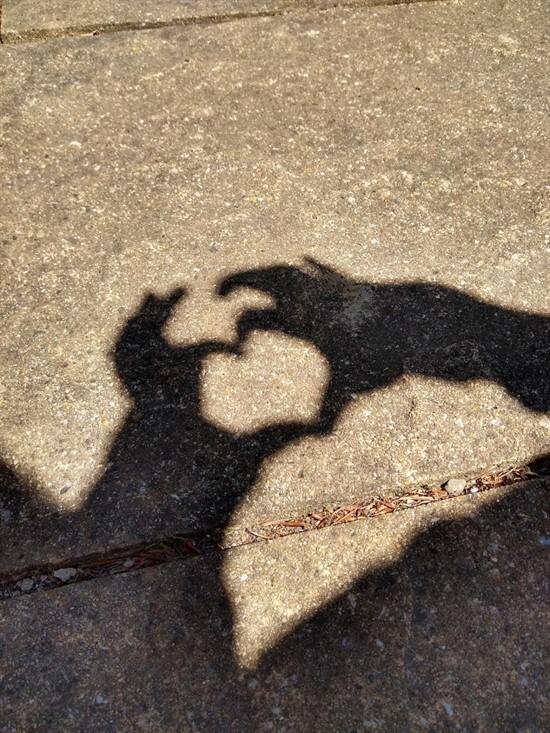 Shadow art 2