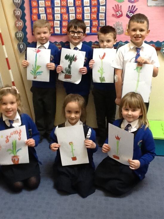 Drawing Plants 3 (5)