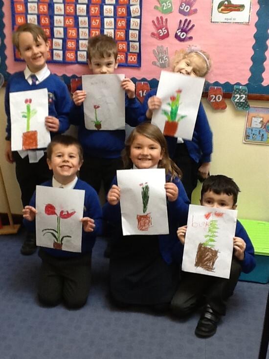 Drawing Plants 3 (7)
