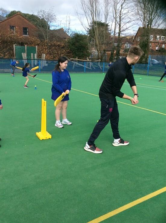 Cricket (3)