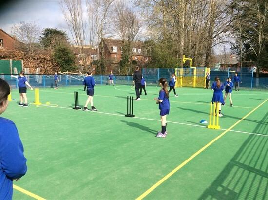 Cricket (4)