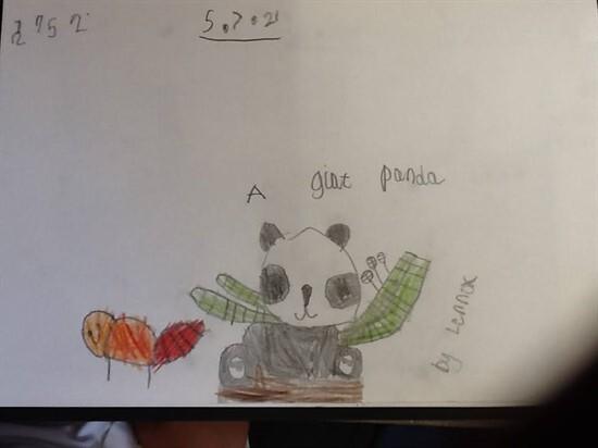 Panda3 (1)