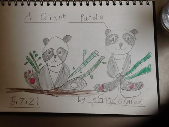 Panda3 (9)
