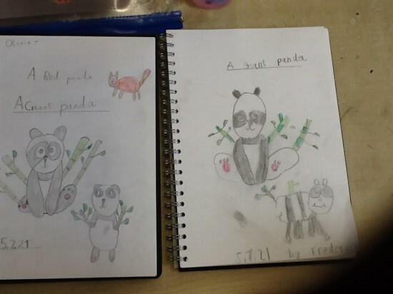 Panda3 (12)