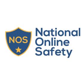 National Online Safety Image.png