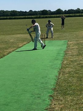PE County Cricket 1