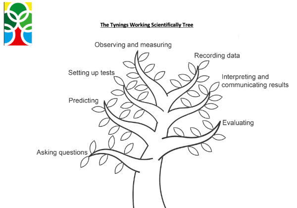 Working_scientifcally_tree_tynings.png